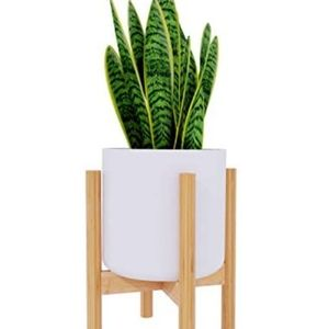 """Bamboo pot stand for 8"""" pot"""